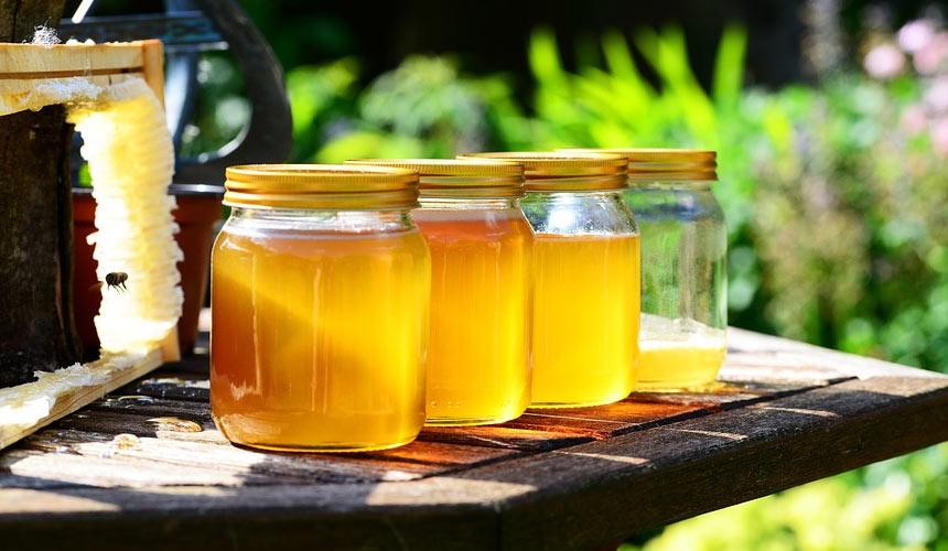 Bee honey: a powerful natural antibacterial